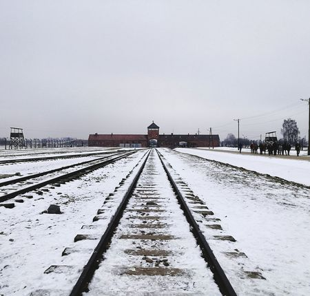 Winter Snow Cold Temperature Weather Environment Outdoors Tranquility Frozen Day Tranquil Scene Nature Landscape Sky The Way Forward Vacations Polar Climate Photography Themes Beauty In Nature Clear Sky Birkenau Memorial Birkenau