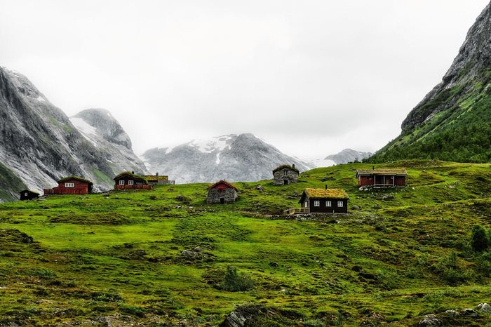 Wooden Cabins with grass roofs standing in the middle of a green valley surrounded by snowcapped mountains in Norway before Geiranger. Windows Manipulated Green Valley Snowcapped Mountain Wooden House Living In Norway Green Grass Cabin In The Mountains Cabin In The Woods Houses And Windows Grass Roof Nature Nature Photography Outdoors Photo Photographer Landscape Travel Travel Destinations Traveling Tranquility Mountain Beauty In Nature Nature Grass Hiking Green Color Tranquility Scenics Home