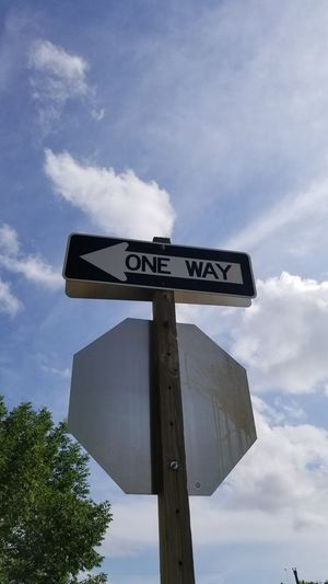 Road Sign One Way Street Name Sign Guidance Direction Rural Scene Weather Vane Tree Arrow Symbol Sky Traffic Arrow Sign Directional Sign Road Warning Sign Warning Sign Information Directing Arrow Sign Pole Road Signal Instructions Information Sign Warning