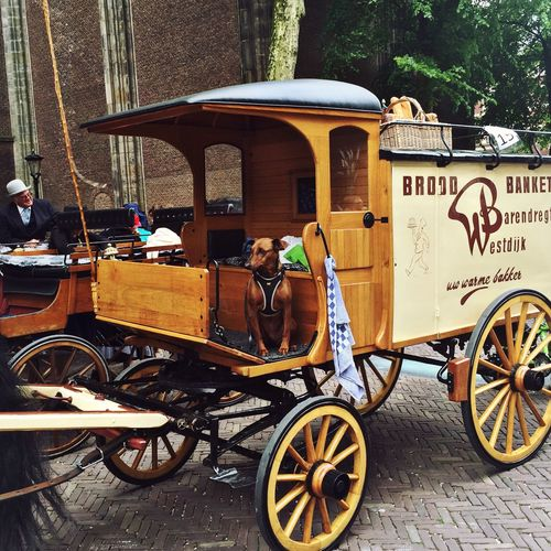 Oldwagon Dog Oldtimer Carrage Check This Out Utrecht , Netherlands