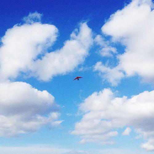 Sky Flying Belong Anywhere Capturing Freedom