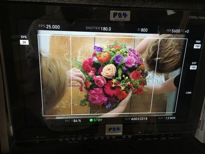 On set. Flower