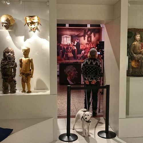 норвегия Осло Oslo Norway norsk музей museet museum dog собака