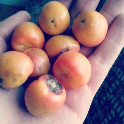 Buti á Frutinha Azedinha Coisaboa