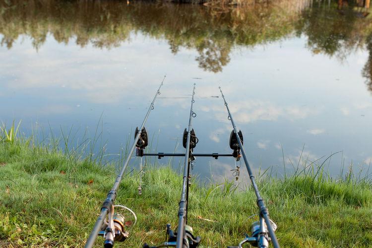 Panoramic view of fishing rod at lakeshore