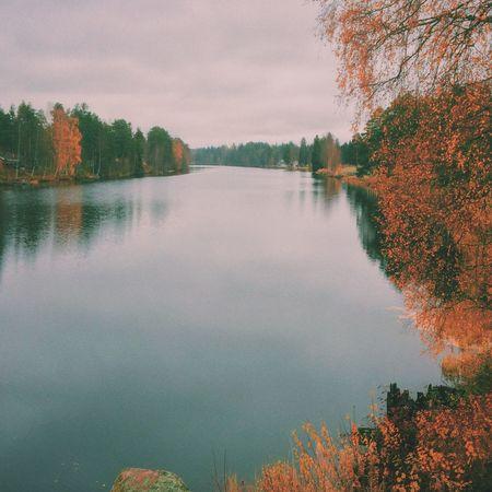 Dalälven, Sweden Hanging Out Home Sweet Home Riverside Sweden Nature Dalarna