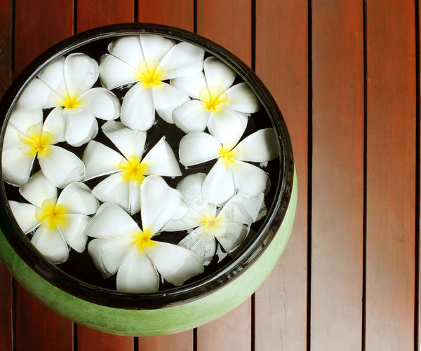 Flower Wood - Material Flowering Plant Close-up No People Directly Above Freshness White Color Indoors  High Angle View Container Table Food And Drink Still Life Vulnerability  Plant Shape Fragility Flower Head Pattern Spa Aroma Aromatherapy Frangipani Frangipani Flower Freshness