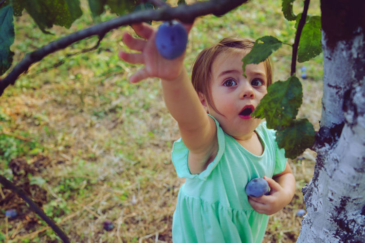 Baby girl picking fruit from tree on land