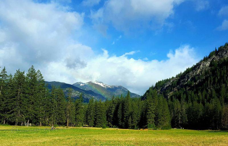 Rainbow after the storm. Stehekin Rainbow Storm EyeEm Selects Tree Mountain Sky Grass Cloud - Sky Countryside
