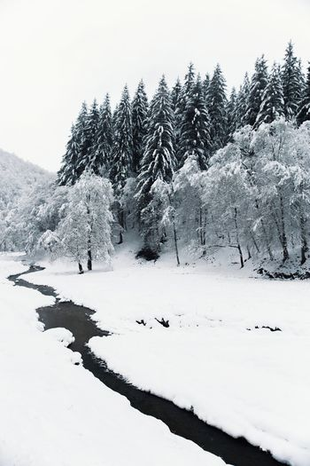 Landscape_Collection Nature Snow ❄ Tree Winter Beauty In Nature Cold Temperature Day Landscape Mountain Mountain Range Nature Nature_collection No People Outdoors River Scenics Sky Snow Tranquil Scene Tranquility Tree Weather White Color Winter Shades Of Winter