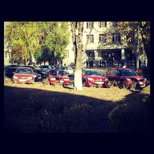 Carred Red Car Street stavropol StGAU