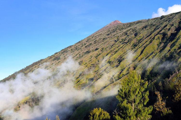 Volcano mountain Indonesia Tree Mountain Sky Landscape Volcanic Landscape Volcano East Java Province Volcanic Activity Geology