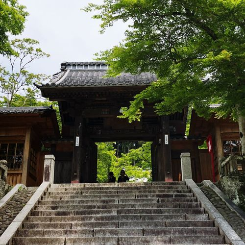 Japanese Traditional Temple Japan Architecture Built Structure Plant Tree Building Religion Place Of Worship