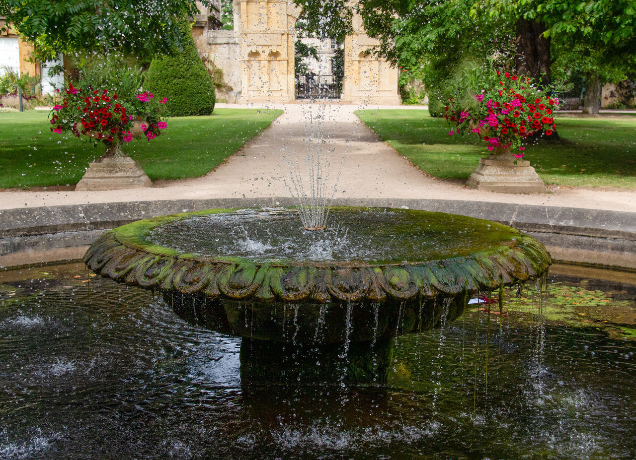 plant, water, fountain, nature, architecture, flower, day, flowering plant, no people, garden, spraying, built structure, motion, pond, outdoors, waterfront, park, growth, formal garden, ornamental garden, garden path, flowing water