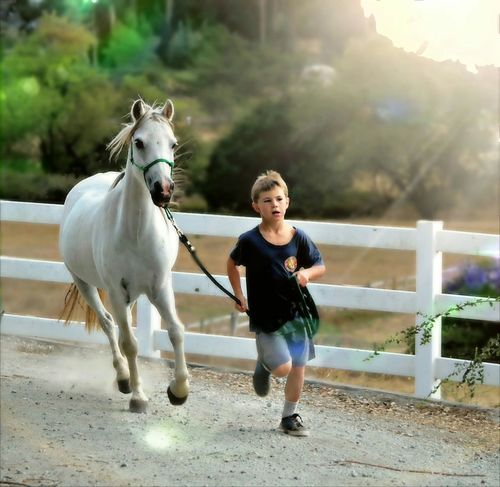 Lifestyles Leisure Activity Mammal Domestic Animals Person Outdoors Day Pet Pet Photography  Pampered Pets Animal Sentimental Cute Portrait Childhood Elementary Age Ponyboy Pony Pony❤️ Ponyride Horse Horses Horse Photography  Horse Life Farm