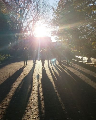 People walking on sunny day