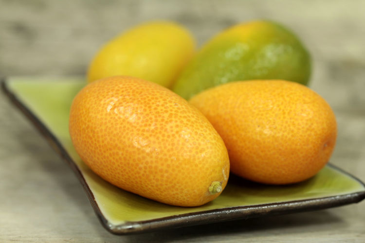 Citrus Fruit Close-up Day Food Fortunella Freshness Fruit Fruits Lover Healthy Eating Kumquats No People Orange - Fruit Sour Taste Whole Yellow Zitruspflanze Zwergorangen Zwergpomeranzen