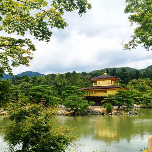 The Golden Pavillion Japan Tourists Taking Photos Photography