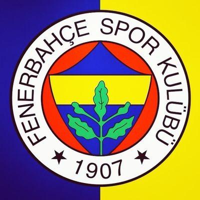 Fenerbahce  Sarilacivert Sarikanarya Saldirkanarya 1907 FB istanbul turkiye sport futbol football
