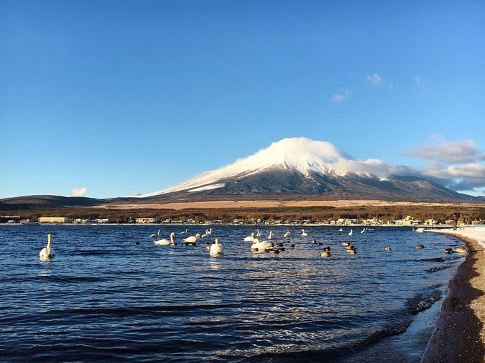 Waking up to this... Mountain Beauty In Nature Outdoors Scenics Landscape Mt. Fuji