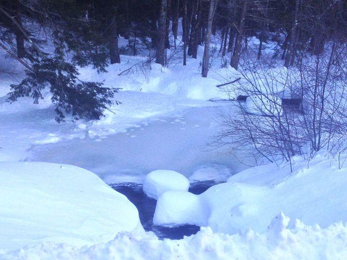 Winter Water Hello World Snow Winter Wonderland Enjoying Nature Happy Peace And Quiet Frozen Good Times