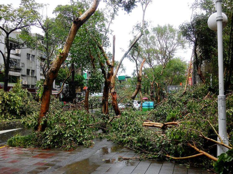 Badai typhoon Soudelor telah berlalu..Alhamdulillah..aku baik-baik saja..😇 Typhoon