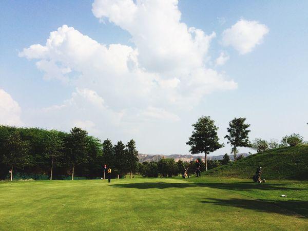 Golfcourse Golfing Green Grass Nature Iphonephotography Golf