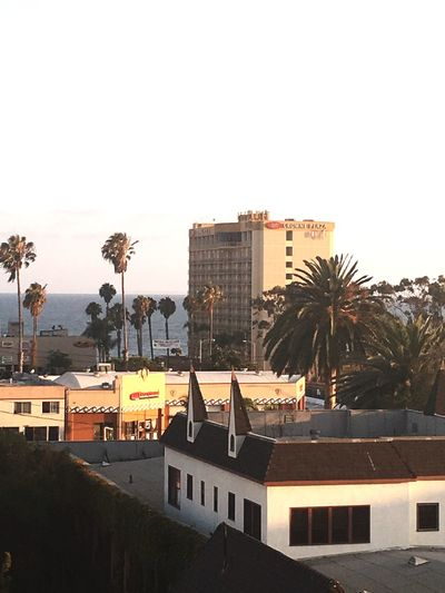 On the rooftops of Ventura Ca - Architecture Palm Tree City City Life No People Cloud - Sky EyeEm Outdoors Hidden Gems  Follow_me Ventura Ca Summer View Rooftop From The Rooftop Hotel
