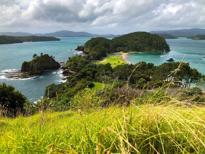 Bay of islands 🌴 Bayofislands Sea Grass Newzealand Island Water Sea Beauty In Nature Sky Plant Scenics - Nature Land Cloud - Sky Beach Bay Green Color No People Tranquility Tranquil Scene Nature Growth