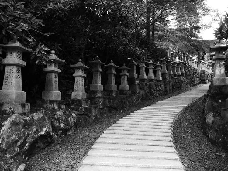 Ancestor Ascension Black And White Cold Contrast Contribution Dawn Ephemeral Lily Holy Inscribed Japan Kagawa Prefecture Meeting Point Mountain Name No Filter Outdoors Silence Sky Slope Stone Tree Vanishing Walk White