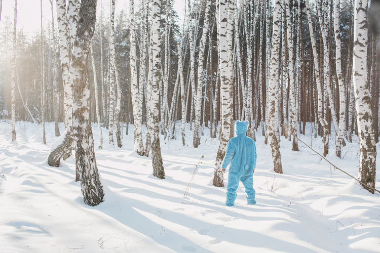 Rear View Of Man Wearing Costume Standing Against Trees On Snowy Field In Winter