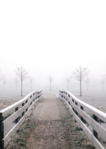 Something about symmetry that is unsettling 🤔 what are your plans this weekend? mine are probably going to walk on the ice!! haven't done that in like 5 years and now it's so cold that it's finally possible again! ⛸ Early Morning Enjoying Life Travel Destinations The Netherlands Sunrise Foggy Morning Foggy Scary Horror Empty Mysterious Creepy Symmetry Symmetrical Park Bridge Bridge - Man Made Structure White Winter Cold Temperature Weather Snow The Way Forward Fog Bare Tree Outdoors Tree No People Tranquility Landscape Visual Creativity Going Remote