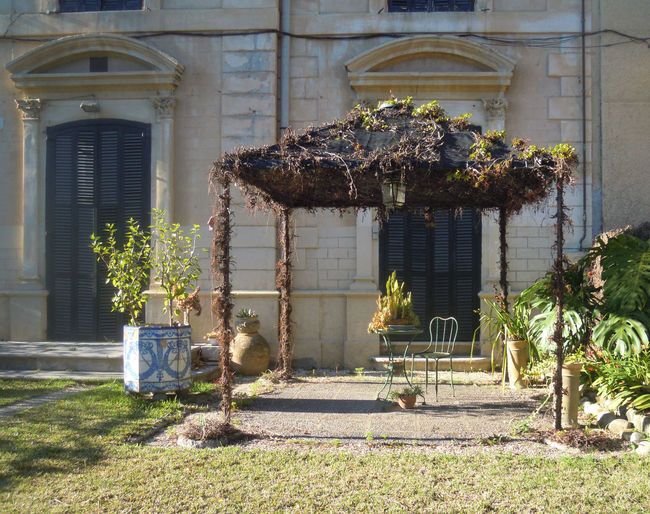 Ancient; Built Structure Day Garden Gazebo; No People Outdoors Plants; Terrace; Umbrella; Vintage;