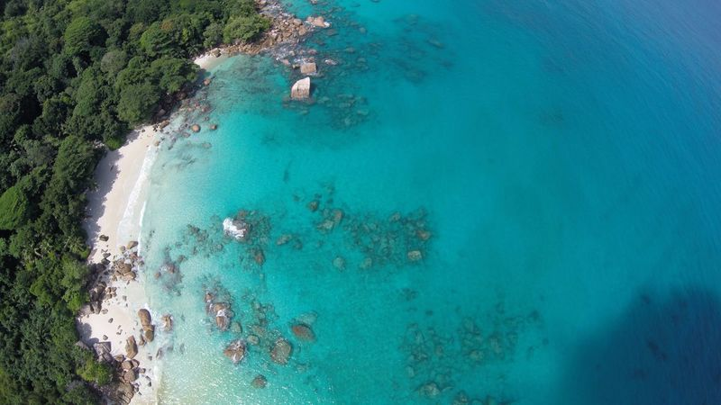 Beauty In Nature Blue Coastline Elevated View High Angle View Leisure Activity Lifestyles Nature Outdoors Scenics Sea Seychelles Shore Tranquil Scene Tranquility Turquoise Colored Vacations Water