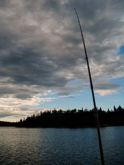 Fishing Tree Sky Lake Cloud - Sky Nature Tranquility Water Beauty In Nature Tranquil Scene No People Outdoors Scenics Day Fishing Fishing Pole Silhouette