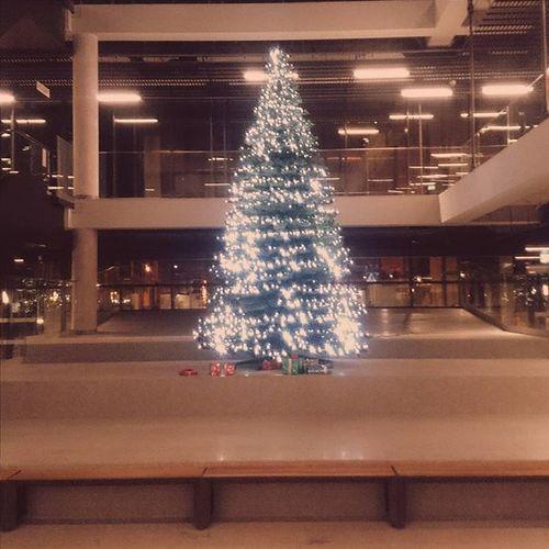 Sopot Ilovesopot Choinka Christmas Christmastree Nowydworzec