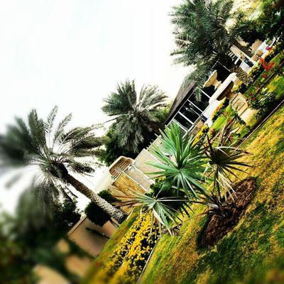Shj Home Majlis Tent garden parents