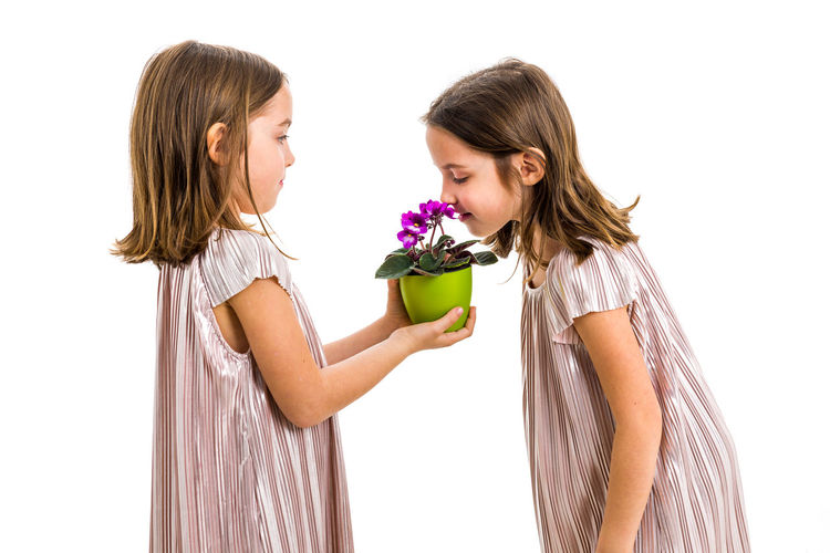 Identical twin girl giving viola flower pot to her sister. Little girl child is giving a gift or present of flowers to her sister. Profile view, studio shot, isolated on white background. Flower Flowering Plant Child Girls Two People Females Women Twins IDENTICAL TWINS Gift Present Smelling Smelling The Flowers Sisters Family Flowers Flower Pot Pot Potted Plant Viola Violet Violet Flowers Green Young Adult Childhood Children Garden Gardener Holding Giving Hands Kid Lifestyles Violaceae Fun Plant Dress Surprise White Background Profile View Studio Shot White