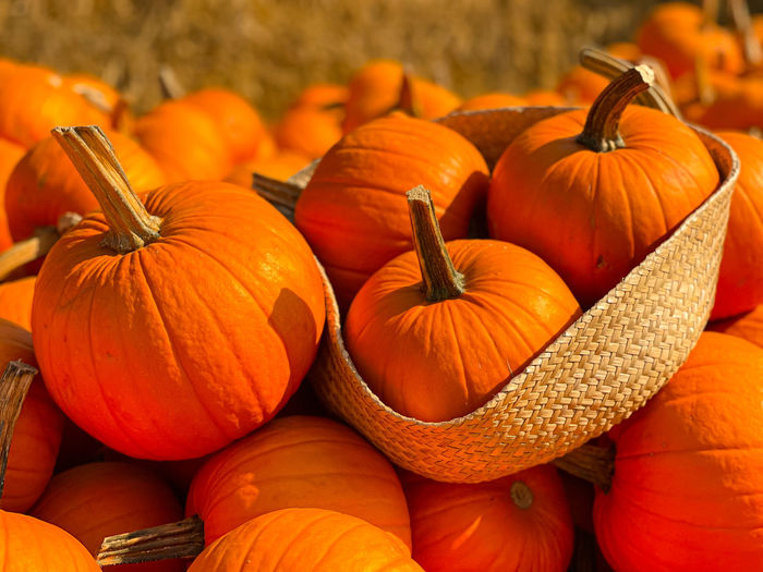 Close-up of pumpkins for sale at market stall