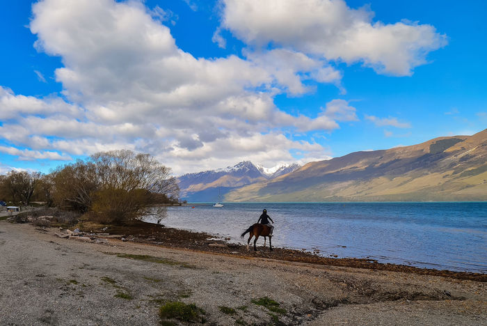 Rider on horseback near Lake Wakatipu. Glenorchy, NZ Adult Adults Only Baby Stroller Beauty In Nature Bicycle Cloud - Sky Day Men Mountain Nature One Man Only One Person Only Men Outdoors People Scenics Sky