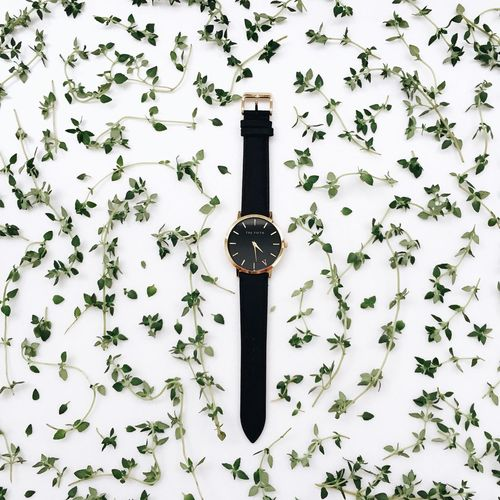 Puns Thyme Time Good Time Timepiece Watch Watches Creative