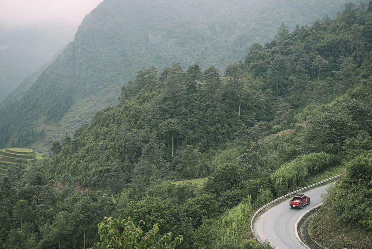 High angle view of winding road in forest
