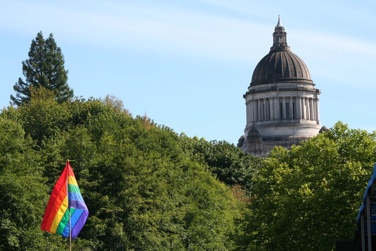 Rainbow Flag Against Trees And State Capitol Building