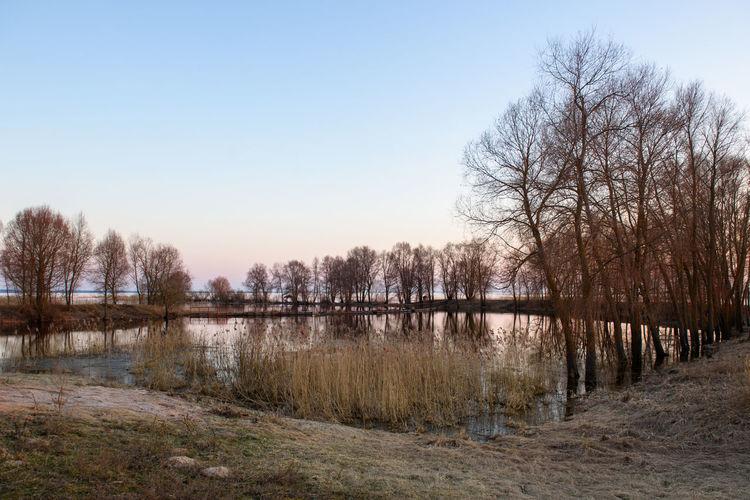 Lubana wetland