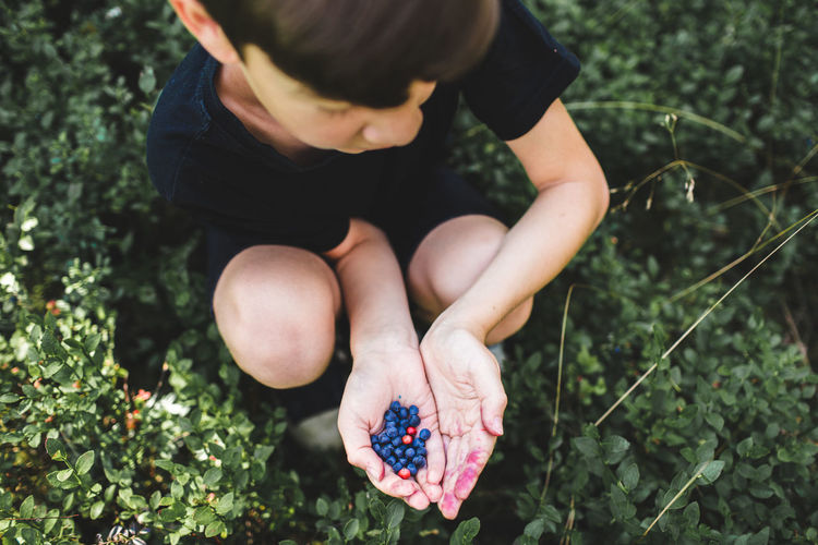 High angle view of baby hand holding berries on field