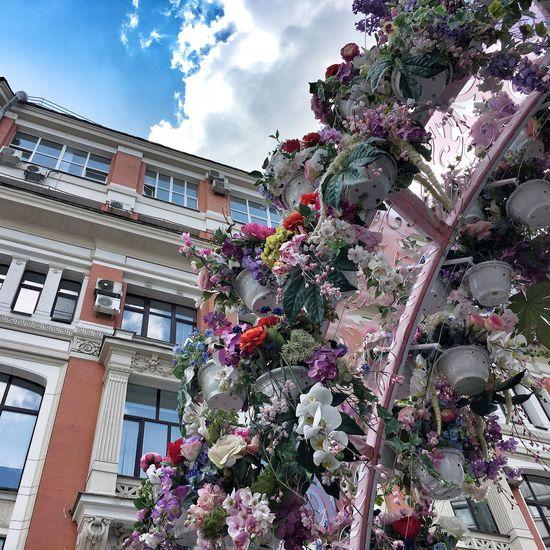 Public Space Flowers