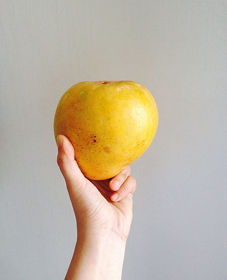 Thanks mom for giving me a giant MANGOOOOO!! 😂😂 EyeEmBestPics IPhoneography Photography Photooftheday Fruit Taking Photos EyeemPhilippines Popular Photos Fotoshooting