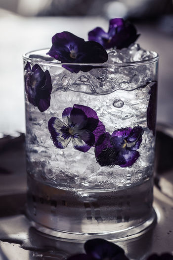 Gintonic with flowers Afterwork Gintonic Icecube Alcohol Bar Close-up Drink Drinking Glass Flower Freshness Indoors  Lifstyle Longdrink Nightlife No People Petal Purple Refreshment