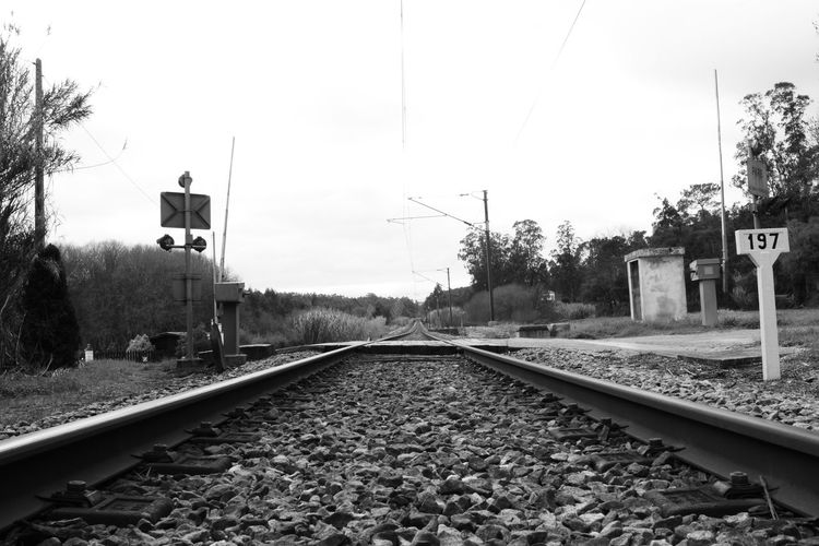 Railroad Track Transportation Rail Transportation Railway Signal Day The Way Forward No People Sky Outdoors Tree Rail Railroad Blackandwhite monochrome photography Caminho De Ferro Pretoebranco