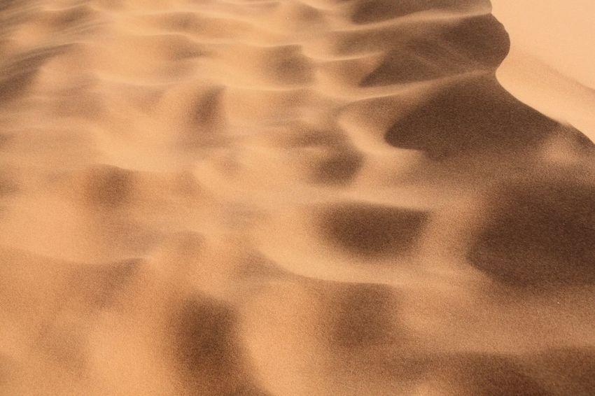 Close-up Sand Day Outdoors Nofilter#noedit No People PhotobyDNA Beauty In Nature Nature Namib Desert Namib Dunes Sun Namib Naukluft National Park Namibia Desert Dunes Human Tracks